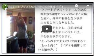 脳卒中後ウィートグラス療法経過ビデオ
